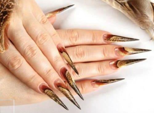 Дизайн ногтей формы стилет - перо