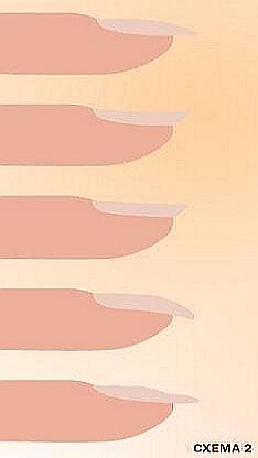 Различные формы натуральных ногтей